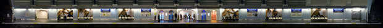 Champs-Elysees Clemenceau - Larry Yust