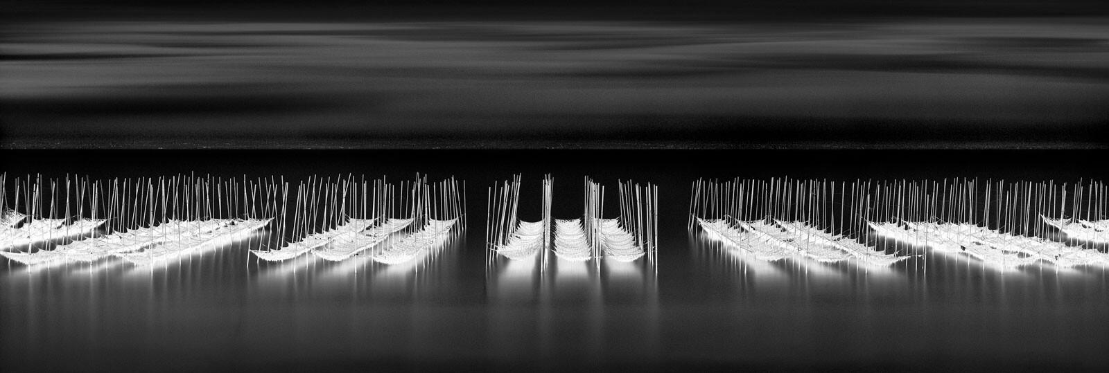Atsumi Nets - Michael Levin