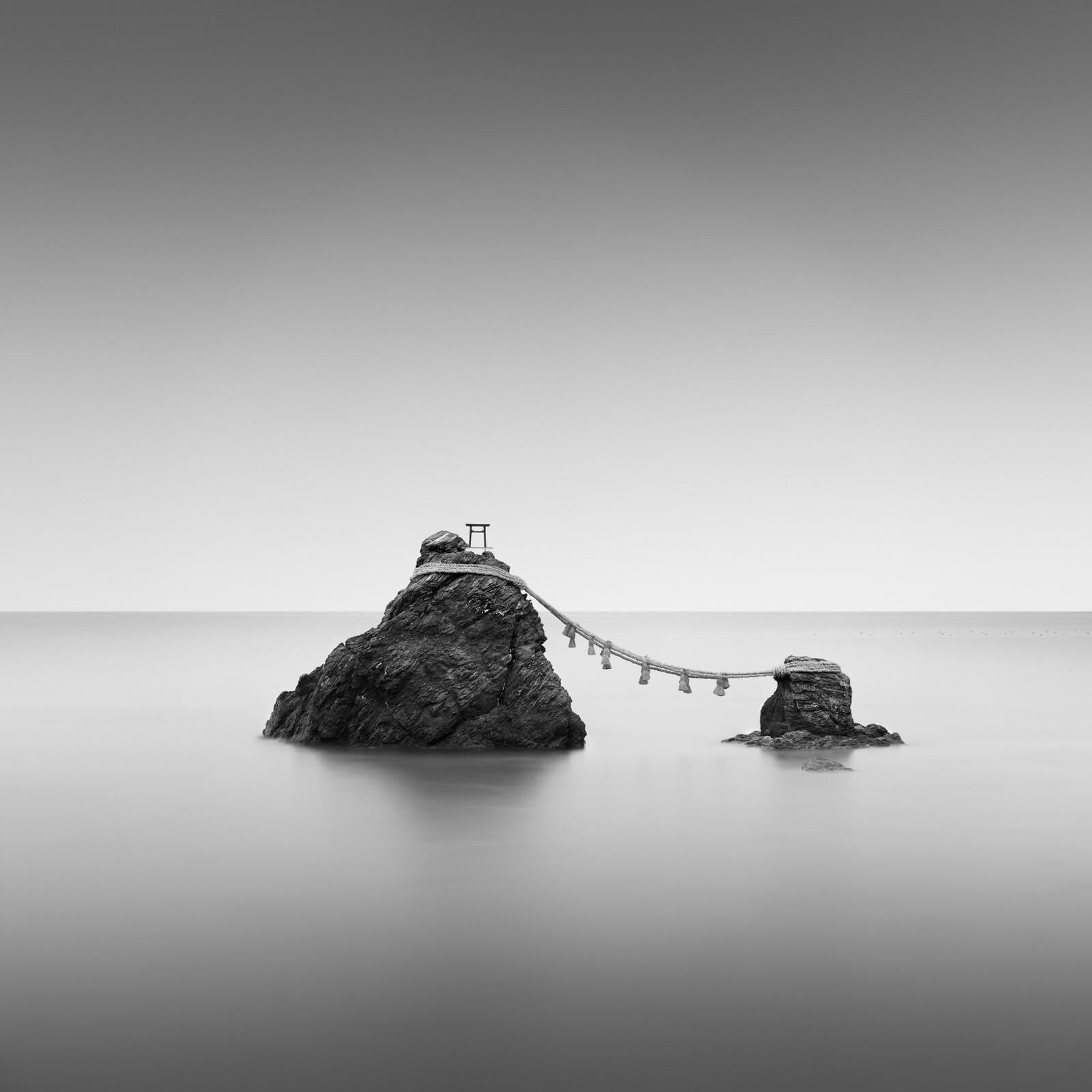 Meoto Iwa - Michael Levin