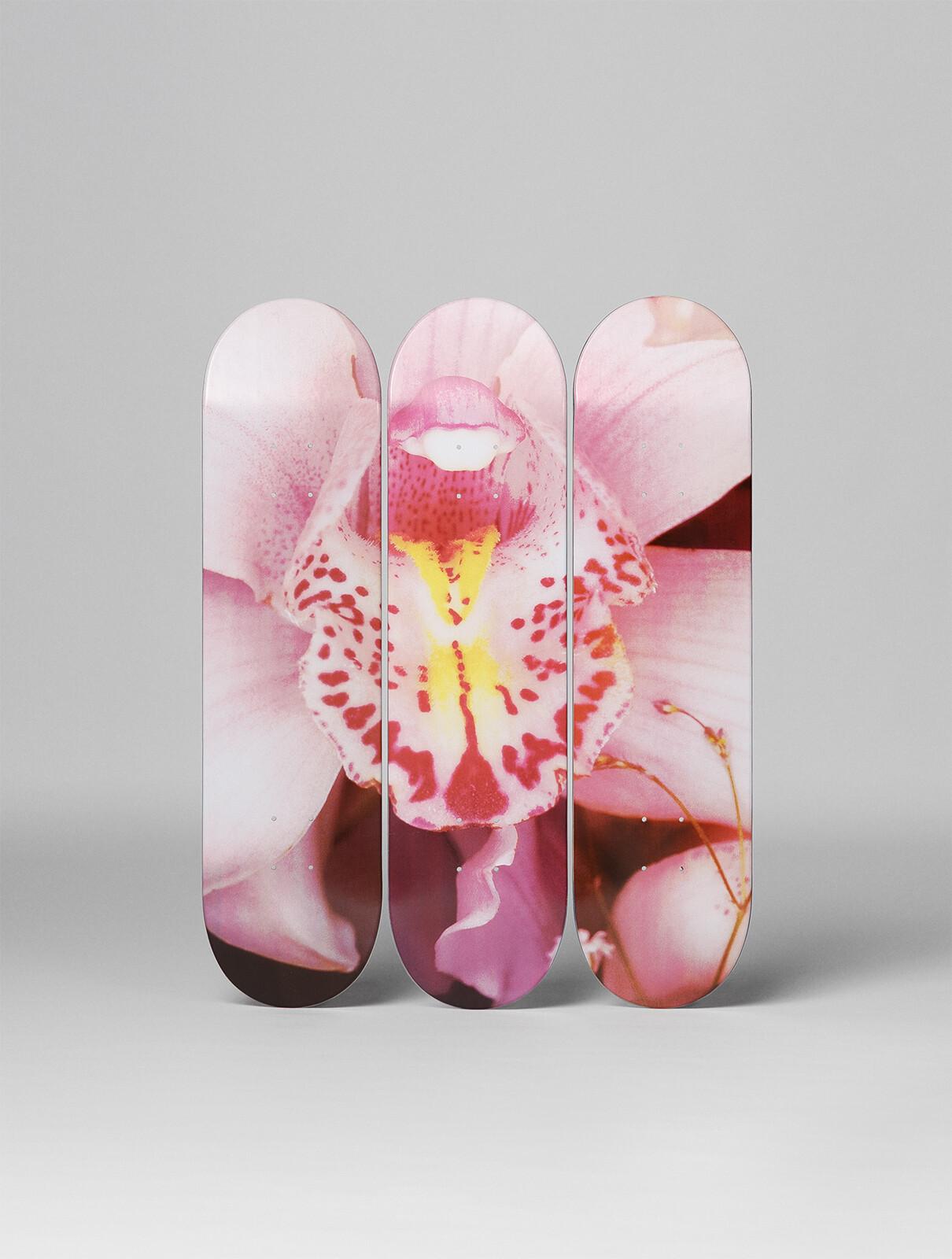 Orchid - Nobuyoshi Araki
