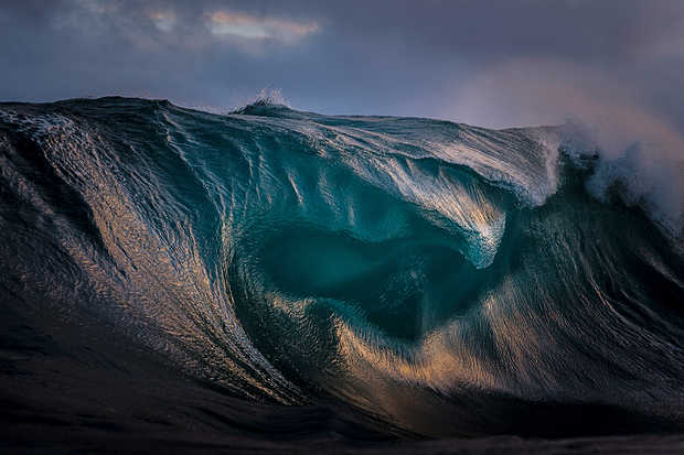 Oil - Ray Collins