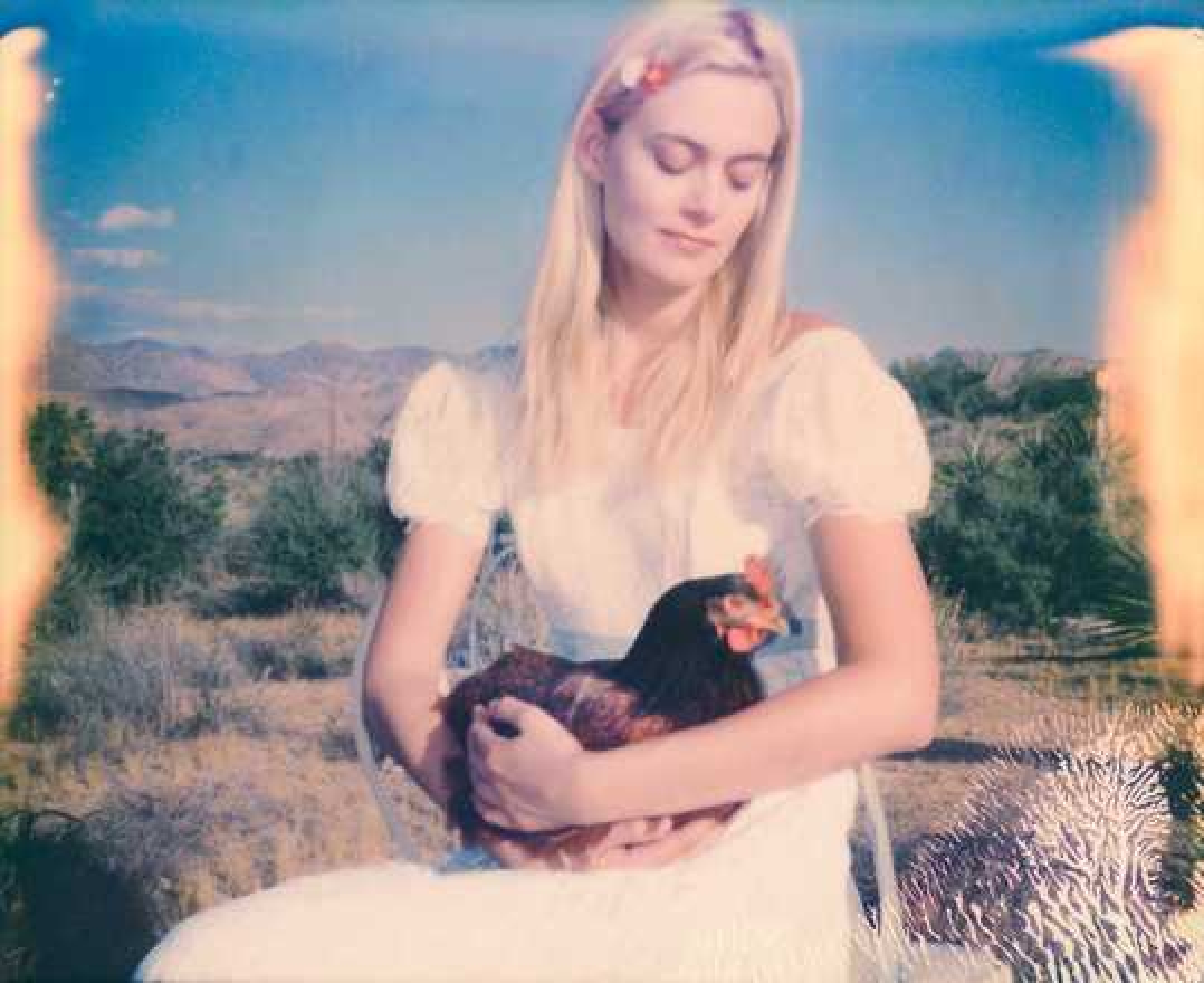 Chicken Madonna - Stefanie Schneider